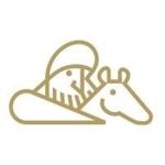 新小説投稿サイト「セルバンテス」について語るスレ