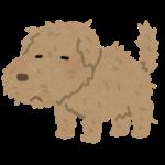 【悲報】ラノベはどんどん負け犬の受け皿になっていく