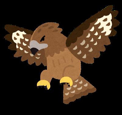 bird_tonbi
